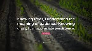 hal borland quote u201cknowing trees i understand the meaning of