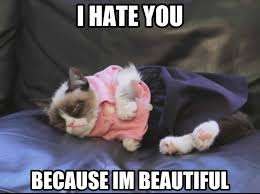 Tard The Grumpy Cat Meme - grumpy cat on fashion cute cats 1 tard pinterest grumpy