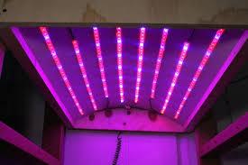 philips led grow light led grow light strip picture of led grow light philips led grow