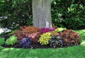 66 simple and easy backyard landscaping ideas wartaku net