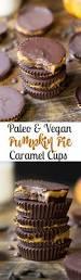 paleo thanksgiving desserts 25 best ideas about paleo pumpkin pie on pinterest sugar free