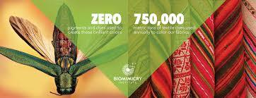 Design Pictures What Is Biomimicry U2013 Biomimicry Institute