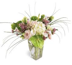 Oasis For Flowers - shop for flowers and gifts from tyrrells florist your online