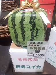Japan Has More Than Just Square Watermelons Way More