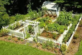 backyard vegetable garden gardening design