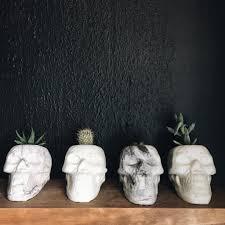 skull succulent planters popsugar home