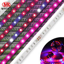 12v dc led grow lights 14w e27 led grow light strip 12v dc for microgreens rohs led grow