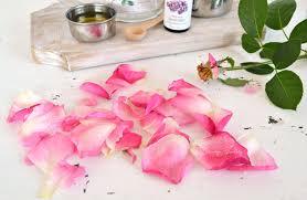 Rose Petals Diy Rose Petal U0026 Lavender Sugar Scrub Dreams Factory