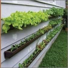 raised garden bed ideas arcadia farms