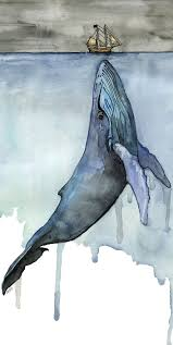 Whale by Best 25 Whale Art Ideas Only On Pinterest Whale Drawing Whale