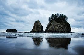 Washington beaches images Second beach washington state tidal treasures jpg