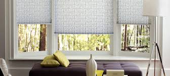 Fabric Blinds For Windows Ideas Dining Room Decorations Window Blinds Custom Ideas Wonderful