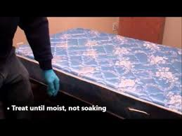 Medicine For Bed Bugs How To Treat For Bed Bugs Transport Mikron Bed Bug Treatment