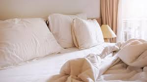 bed bugs pillows when to replace your mattress and pillows bt