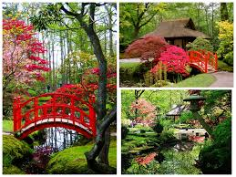 the most beautiful japanese gardens in the world adam borzy