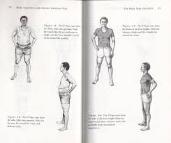body type reference pictures health alkemy