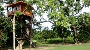 tree house at katarniaghat wildlife sanctuary youtube