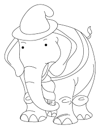 elephant wearing hat coloring download free elephant