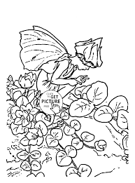 flower fairy herb twopence coloring page for kids girls and
