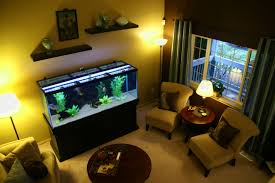 living room decorating ideas fish tank living room ideas