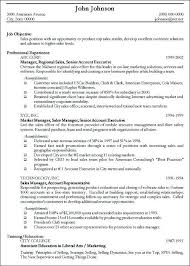 example for professional resume resume professional summary