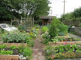 218 best garden ideas images on pinterest gardening vegetable