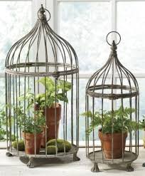 bird cage decoration using bird cages for decor 46 beautiful ideas digsdigs sewing