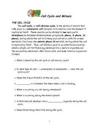 Mitosis And The Cell Cycle Worksheet Cell Cycle And Mitosis Puzzle From Teachers Pay Teachers