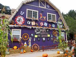 live halloween pumpkin patch at lemos farm the outlaw mom blog