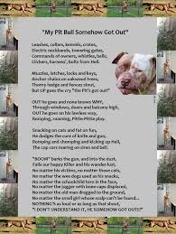 american pitbull terrier a legacy in gameness dead game mature content pit bull poet laureate