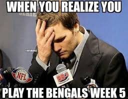 Cincinnati Bengals Memes - nfl memes on twitter the patriots look to take on the undefeated