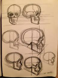 skull proportion studies side view sketch by gcoghill on deviantart