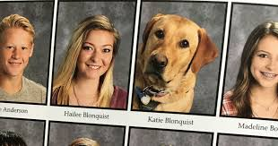 find yearbook pictures diabetic service dog appears in utah yearbook