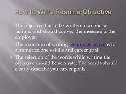 budget project essay 10 things resume lie cheap masters essay