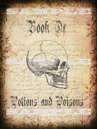 poison halloween props witches spell book cover halloween book cover of spells potion