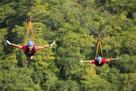 Treetop Canopy Tours by Zip Line Adventures Are An Attractive Experience In Costa Rica