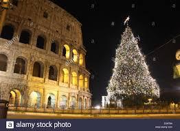 setup a live christmas tree christmas lights decoration