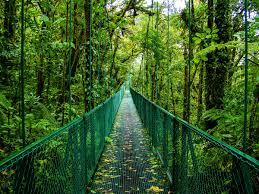 Hidden Canopy Treehouse Monteverde by Monteverde U0026 Santa Elena Travel Lonely Planet