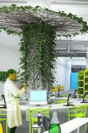 indoor urban garden zandalus net