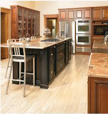 Kitchen Cabinets Michigan with Michigan Kitchen Cabinets Great Cabinetry Turn Key Installation