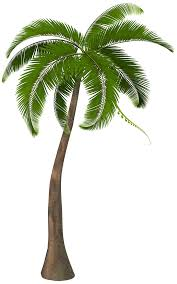 palm trees clip units 11 clipart the gospel project 2