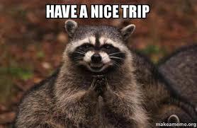 Trip Meme - have a nice trip evil plotting raccoon make a meme