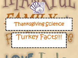 thanksgiving science worksheets worksheets for all and