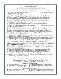 Best Resume Examples For It by Professional Resume Example For It Professional