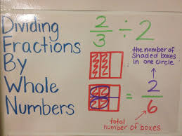 dividing fractions by whole numbers middle math
