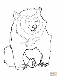 asiatic black bear coloring page free printable coloring pages