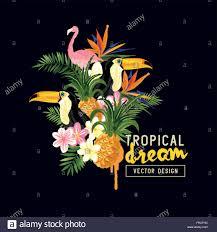 tropical border design tropical elements including