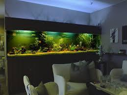 Wohnzimmertisch Aquarium Aquarium Als Tisch Aquarium Als Tisch Bauen Couchtisch Selber