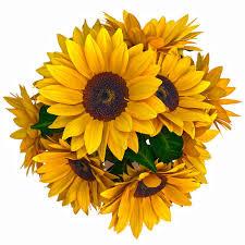 sunflower bouquet 3d model sunflower bouquet cgtrader