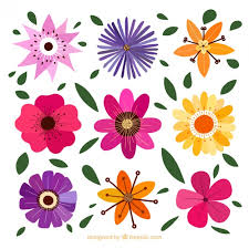 decorative flower decorative flowers with different designs vector premium download